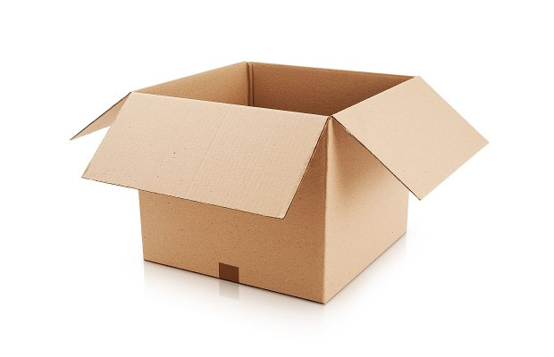Just In Time For Christmas, The $500 Cardboard Box