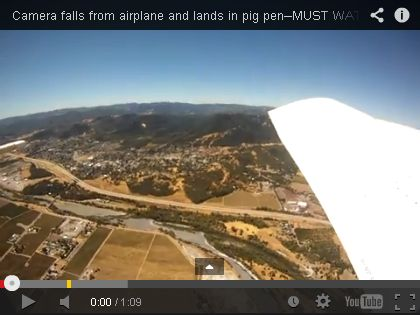A Story of a Skydiver, a Camera, and a Pig