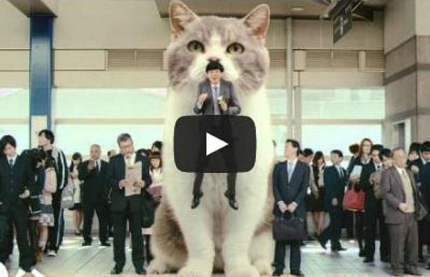 Crazy Japanese Commercial With Giant Cat Will Make You Smile